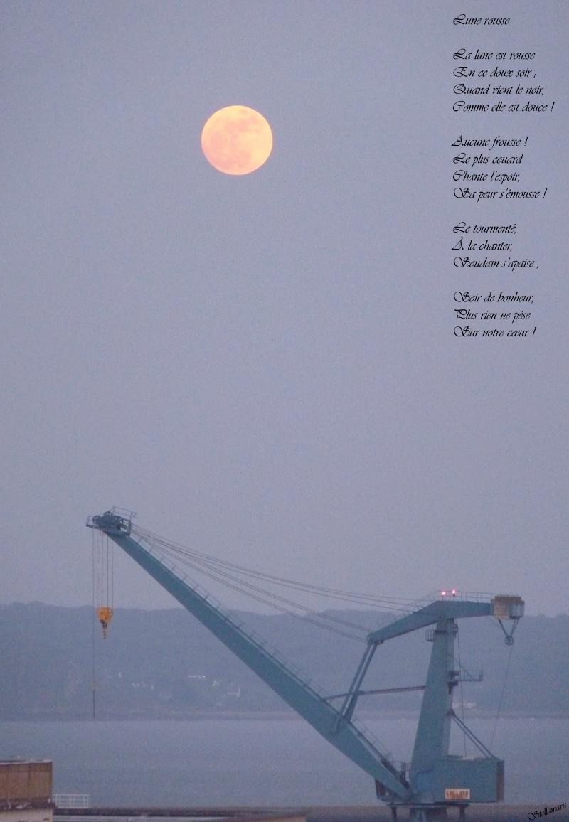Lune rousse / / La lune est rousse / En ce doux soir ; / Quand vient le noir, / Comme elle est douce ! / / Aucune frousse ! / Le plus couard / Chante l'espoir, / Sa peur s'émousse ! / / Le tourmenté, / À la chanter, / Soudain s'apaise ; / / Soir de bonheur, / Plus rien ne pèse / Sur notre cœur ! / / Stellamaris